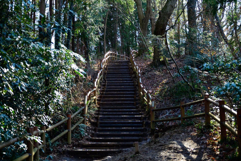 稲荷山コース