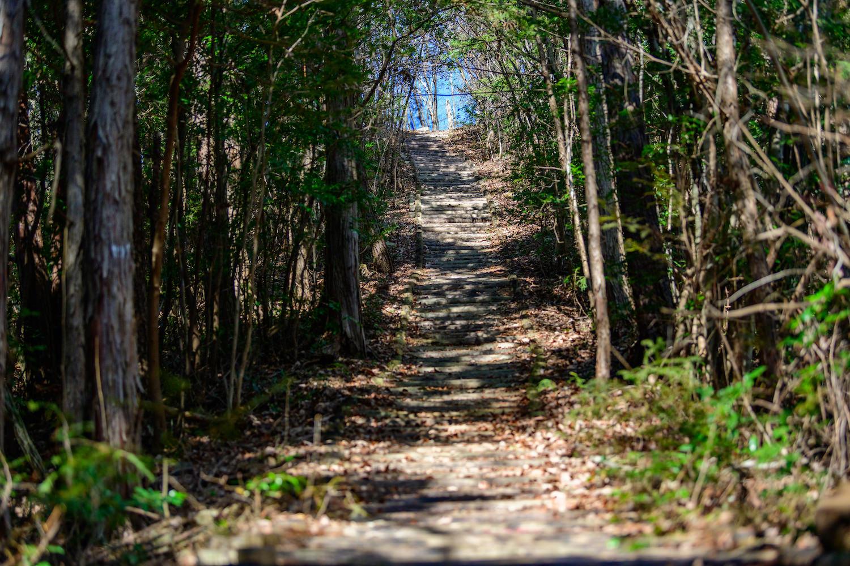 御前山ハイキングコース