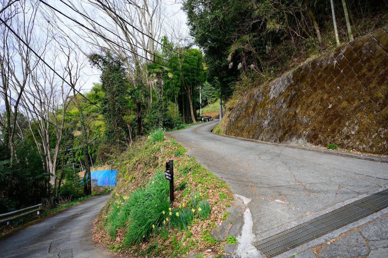 陣馬山 栃谷尾根コース