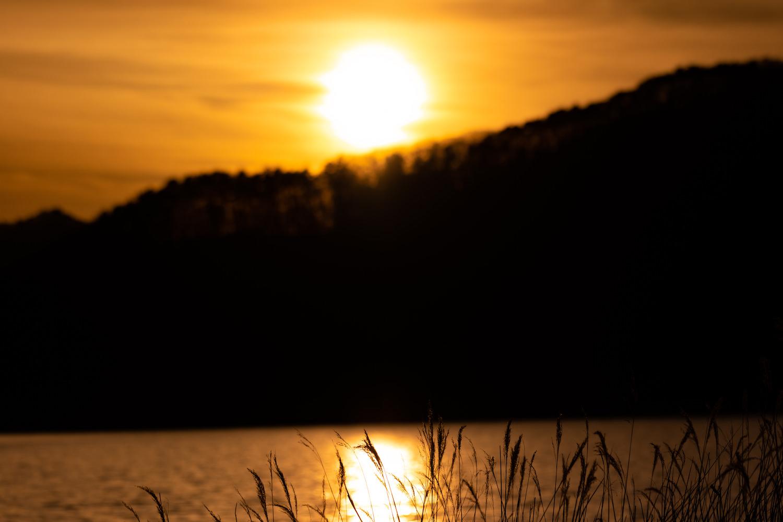 河口湖 長崎公園